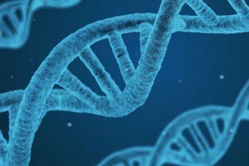 Test Pojedynczy - Toksyny Organiczne